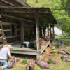 Hog Trial Cabin Cleanup